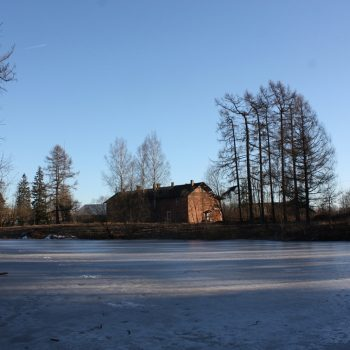 усадьба Приютино