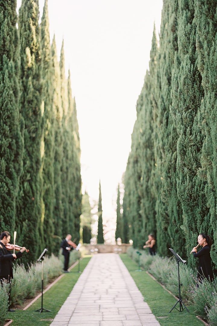 Советы по самостоятельному выбору персонала для свадьбы - 4